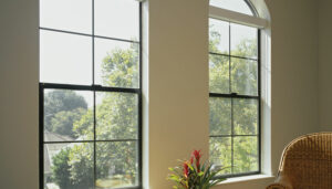 House Windows Companies